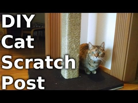 Fast Hacks #23 - Build a Cat Scratching Post