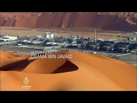 Saudi Aramco - Kompanija i država