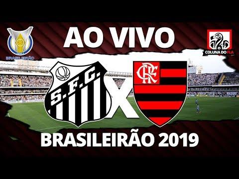 SANTOS X FLAMENGO AO VIVO | 38ª RODADA BRASILEIRÃO 2019 - NARRAÇÃO RUBRO-NEGRA