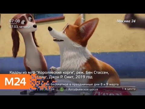 """Почему кинотеатры не хотят показывать мультфильм """"Гурвинек. Волшебная игра"""" - Москва 24"""