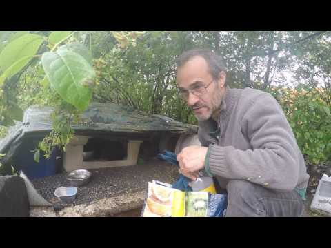 Helder Da Silva Toronto Feral Cat Rescue