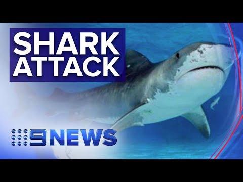 Man Bitten At Remote Beach Near Bundaberg | Nine News Australia
