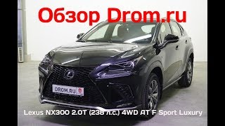 Lexus NX300 2018 2.0T (238 л.с.) 4WD AT F Sport Luxury - видеообзор