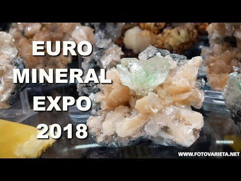 Minerals & Fossils EuroMineralExpo 2018 Turin, International Exhibition, Minerali E Fossili  (1)