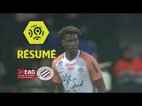 EA Guingamp - Montpellier Hérault SC (0-0)  - Résumé - (EAG - MHSC) / 2017-18