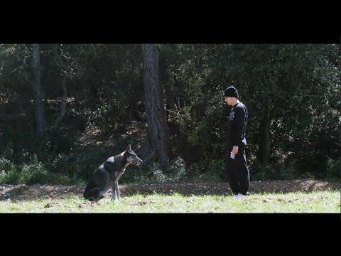"AMBKOR - ""BLACK WOLF"" - #LOBONEGRO [OFFICIAL VIDEOCLIP]"