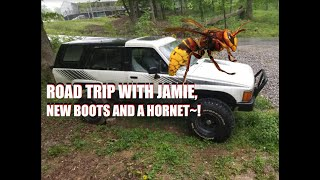 MAY 2,2019 VLOG ROAD TRIP WITH JAMIE, BOOTS AND A HORNET