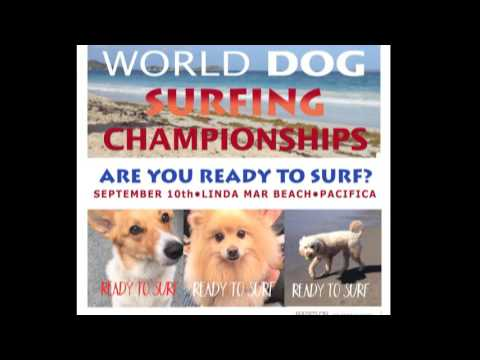 Dog Surfing Competition promotional trailer