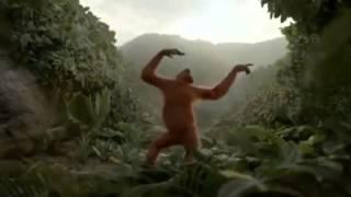 Video Monkey song!!!    (Tamil) download MP3, 3GP, MP4, WEBM, AVI, FLV Juni 2018