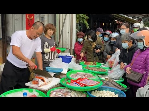 Taiwan Seafood Auction - Amazing Fish Cutting, Salmon, Octopus, Squid !