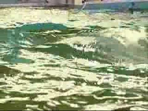 HMRC Ocean Basin thumbnail