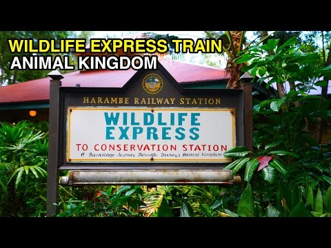 [4K] Wildlife Express Train - Ride to Rafiki : Disney's Animal Kingdom (Orlando, FL)