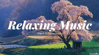 Flute Music , Meditation Music , Study Music , Piano Music , Guitar Music , Relaxing Music