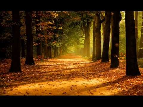 Fall Leaves Wallpaper Powerpoint Background Autumn Pictures Collection Youtube