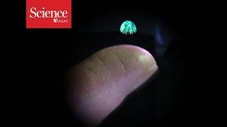 Snippet: 3D hologram