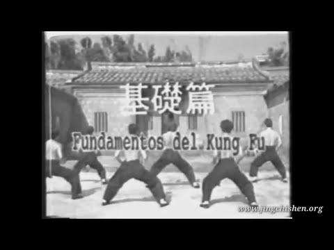 Fundamentos del Kung Fu - Energía, Potencia,  Shaolin Chuan y Artes marciales