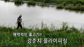 Skygager fly fishing in korea - Fly fishing  Episode 33