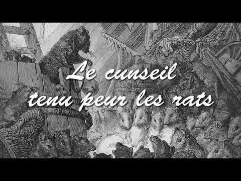 LE CONSEIL TENU PAR LES RATS