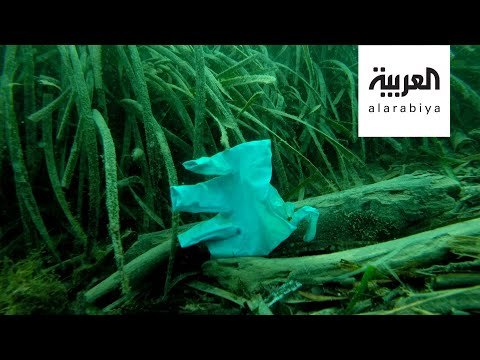صباح العربية | أنقذوا البيئة بالكمامات القماشية  - نشر قبل 2 ساعة