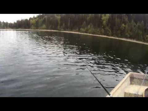 Chironomid Fishing With A Sinking Line