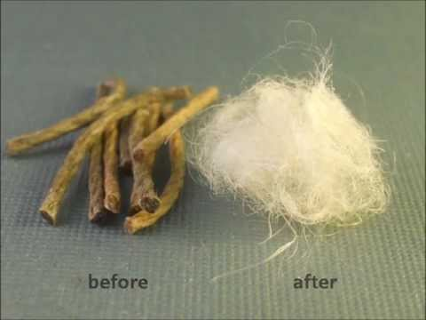Hemp fibre upgrading with catalyzed hydrogen peroxide