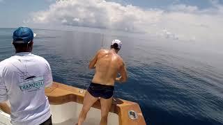 2018 Offshore World Championship | Torneio De Peixes De Bico | Pacific Sailfish