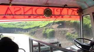 Bus Munnar - Thekkady Kerala India through tea plantations