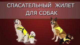 Спасательный жилет для собак(, 2016-06-02T13:00:01.000Z)