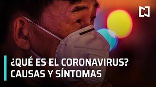 Argentina en alerta epidemiológico ante el brote de coronavirus