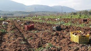 Η κυβέρνηση κάνει πράξη μια σειρά από μέτρα για την ενίσχυση των αγροτών και της αγροτικής ανάπτυξης