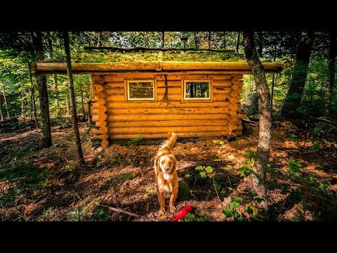 First Hot Sauna in the Forest | Off Grid Log Cabin Life