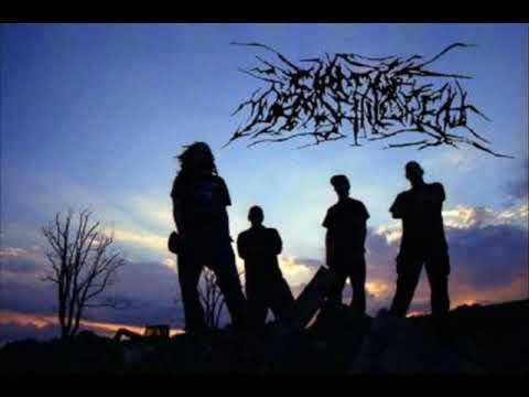 Circle of Dead Children - Playdumb (Cover of Hideous Mangleus)