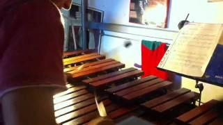 M. Goldenberg - Etude IX - Allegro Moderato