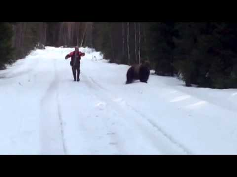 Swedish man scares the living shit out of an attacking bear