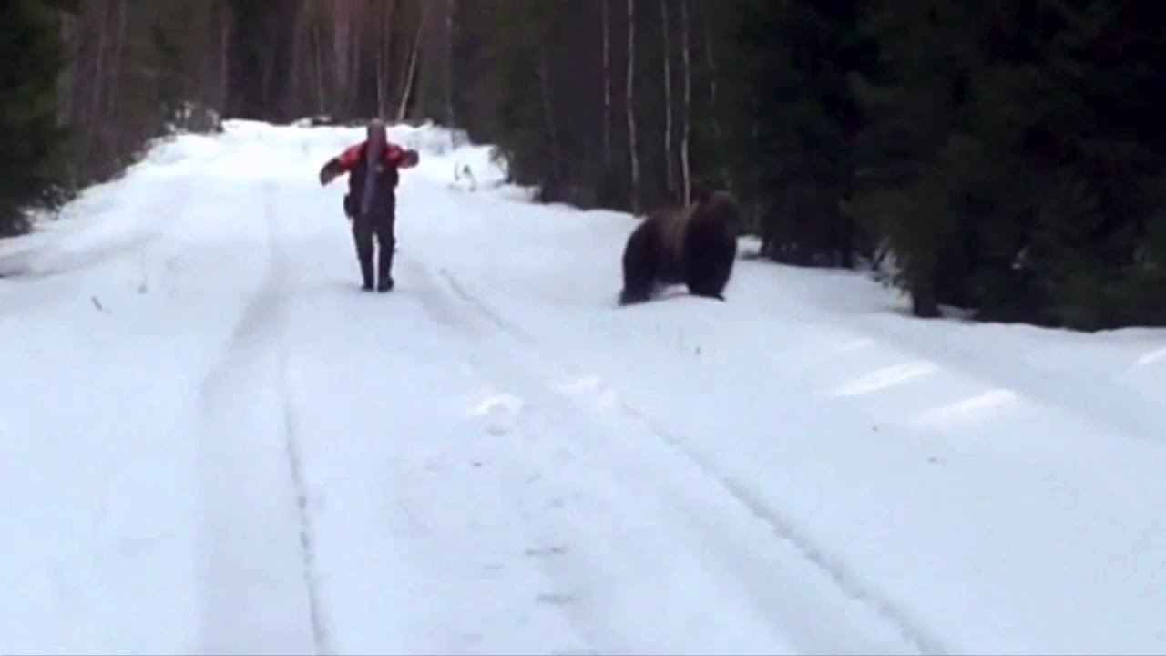 Swedish Man Scares The Living Shit Out Of An Attacking Bear YouTube - Guy captures first person video of the moment a bear attacks him