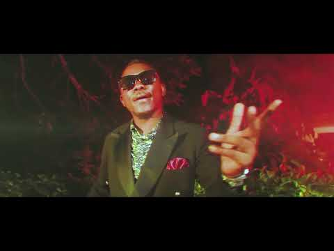 [Music Video]: Dynastie le Tigre – Printania llDJ PIKOLO MIX PROMO