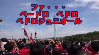 【Kashima Antlers】 鹿島アントラーズ/ペドロチャント!!歌詞付き 鹿島サポーターチャント・応援動画【Football chants】