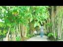 Roti - Ilustrasi Mimpi (Official Video Clip)