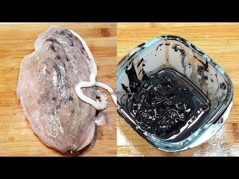 WARNING!!! THIS COULD GET REALLY MESSY!!! HOW TO EXTRACT CUTTLEFISH INK SAC!!!