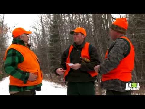 What If You Were Warden?: Investigating Deer Hunters