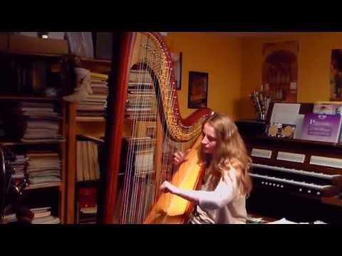 See You Again - Wiz Khalifa feat. Charlie Puth (Harp Cover)
