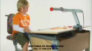 Обзор возможностей мебели Moll