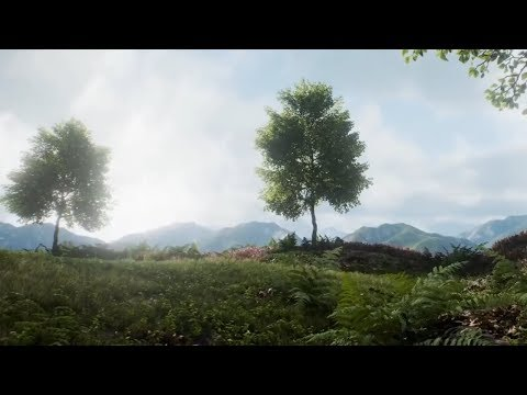 (2018) - Photorealistic Forests with Unreal Engine 4