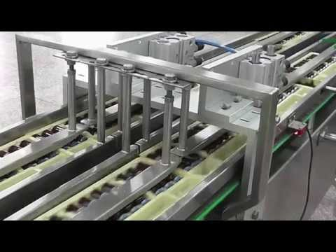Integrated 600 ppm Ampoule & Vials Packaging Line by Pharmapack
