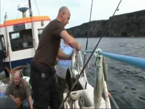 Scrabster - Charter Boat Fishing