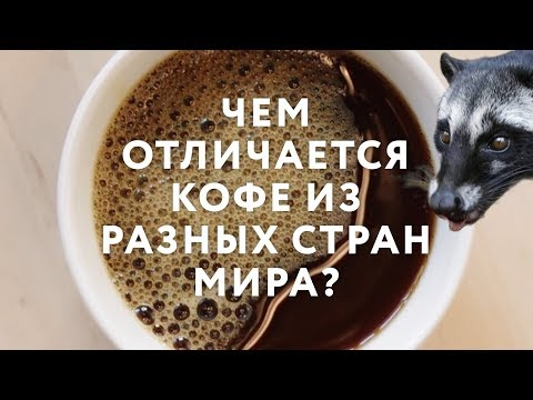 Чем отличается кофе из разных стран мира?