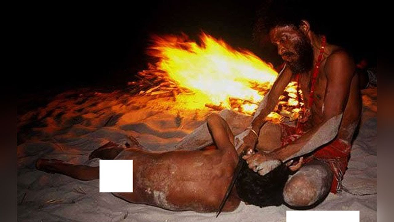 Download Crazy And Fascinating Facts About Aghori Sadhus In India
