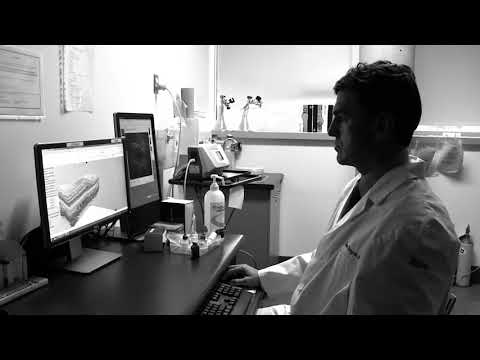 The Pulse, Digital Short 6: Science and Research