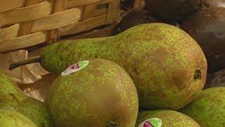Скандинавская диета помогает предотвратить старческое слабоумие (новости)