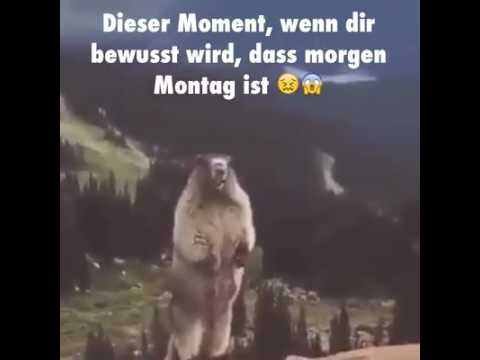 Morgen Ist Montag Youtube